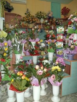 Floraria Perana Resita:Floraria Perana, Buchete de mireasa, lumanari impodobite, aranjamente pentru diferite ocazii, plante interior, exterior, Resita