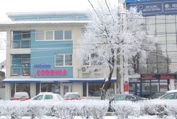 Cofetaria Codrina Timisoara:Cofetaria Codrina, Produse de cofetarie si patiserie, torturi de nunta, pentru botez, aniversari